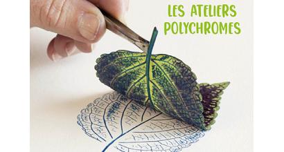 Woka loisirs - Les ateliers polychromes